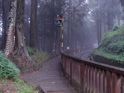 Alishan Forest Recreation Park (Photo:Xcatx)