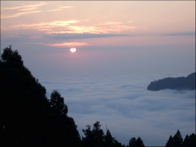 Cloud Sea by Mimi