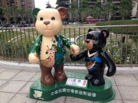 The 2016 Lohas Bear Carnival - Taichung, Kaohsiung