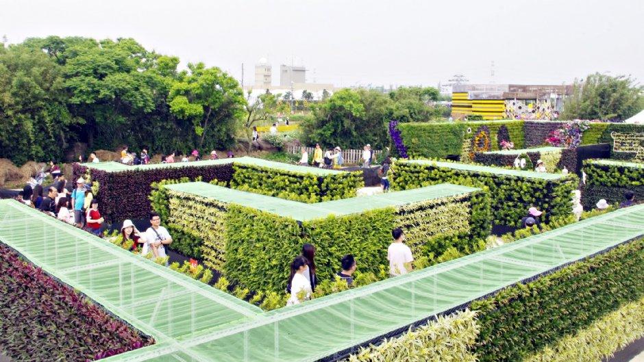 桃園農博園區內的綠迷宮