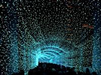 下雪啦!浪漫燈景、市集活動通通有  全台聖誕節活動懶人包