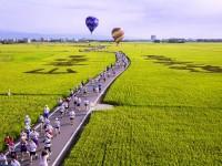 热气球来啦!宜兰版伯朗大道「稻间美径」6/8抢先升空