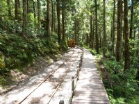 優惠再加碼!12處國家森林遊樂區與烏來台車,9月16日起至年底開放兒童免費