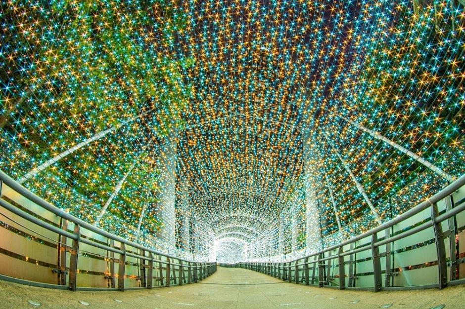 年年吸睛的新北耶誕城燈海隧道