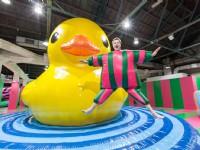 黃色小鴨環遊世界回來了!霍夫曼領軍FUN大動物游到華山