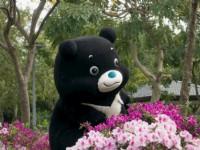 台北杜鵑花季「屬於我們的約定」45萬株杜鵑花3/14競豔登場