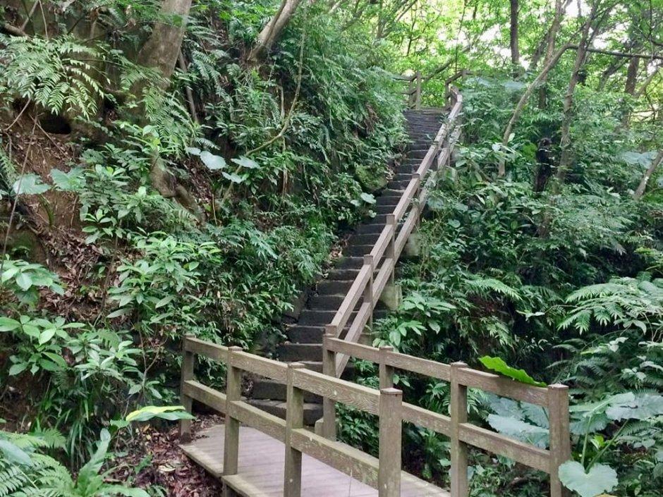 富陽自然生態公園完整保留生態原始環境