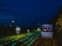 【夏季限定】夜間燈光藝術X七夕音樂會,星光夜騎深澳RailBike新妝亮相