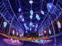 2020澎湖國際海灣燈光節,海陸合一水舞主燈秀9月12日閃耀登場
