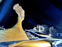 2020北觀山海樂活節 | 「野柳石光•夜訪女王」9/27-10/4邀你一起聚焦野柳岬