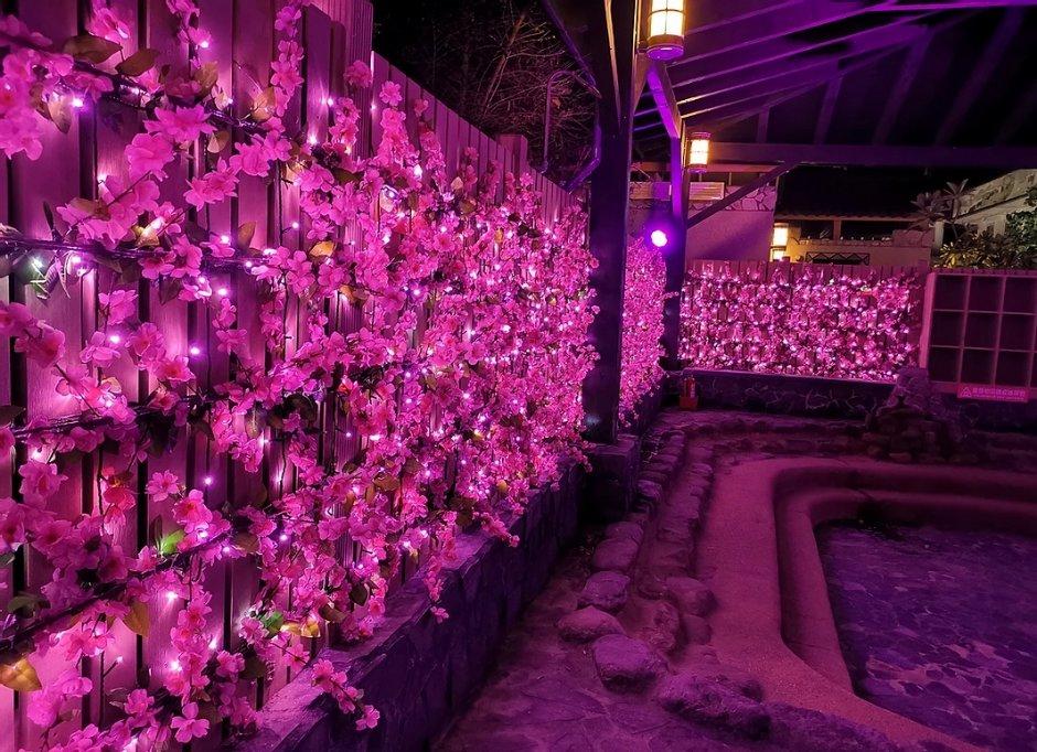 入夜後的旭海溫泉季也有吸睛桃紅燈飾