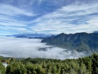 溪頭茶鄉輕旅行 | 森林瑜珈療育x台灣茶五感體驗,讓你活化細胞能量滿滿