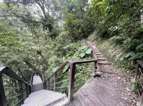 【齊心防疫】林務局管轄之國家森林公園、自然步道等場域,持續暫停開放至6月28日