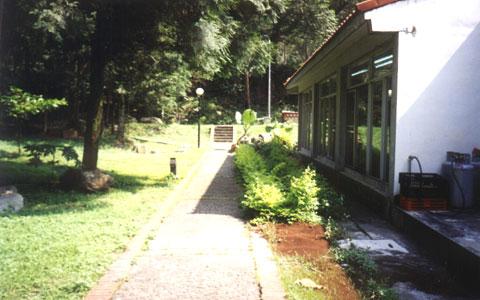 惠荪咖啡园