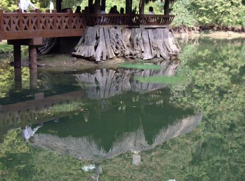 Alishan Sisters Ponds