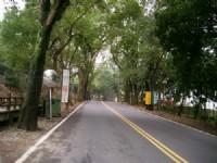 綠色走廊一景<br/> 攝影:eva隨手拍