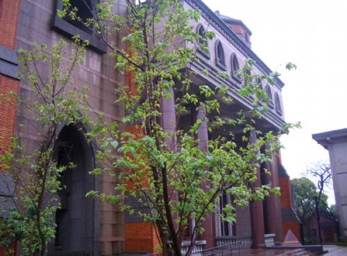 真理大學-新建的教堂