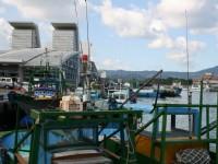 許多漁船<br/> 攝影:老山羊部落格