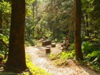 南線的緩坡步道休憩點<br/> 攝影:老山羊部落格