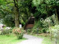 森林浴步道<br/> 攝影:陳美吟