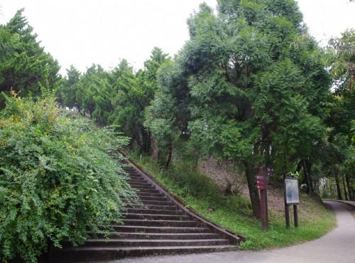 清境農場-步步高昇步道