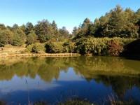 Dasyueshan National Forest Recreation Area