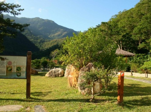 知本国家森林游乐区-藥用植物園解說牌