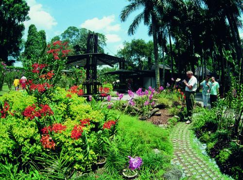 新加坡植物園-新加坡植物園