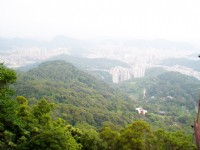 俯瞰市區景觀<br/> 攝影:amo