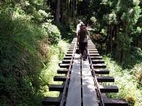 完整的鐵軌步道<br/> 攝影:amo