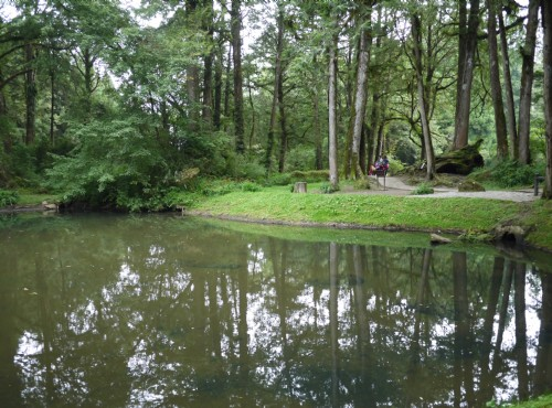 Alishan Forest Recreation Area-201407姊妹潭妹潭