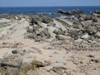 海岸景觀<br/> 攝影:老山羊部落格