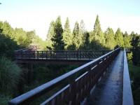 201407沼平公園步道<br/> 攝影:三個井