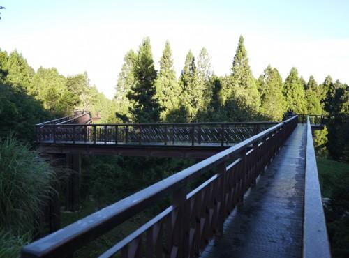 Alishan Forest Recreation Area-201407沼平公園步道