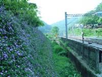 鐵道一景<br/> 攝影:小管