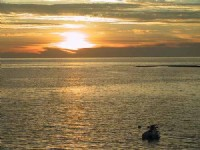 Photo:外婆的澎湖灣-離島行腳