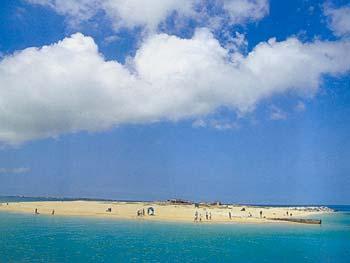 險礁嶼-美麗的險礁