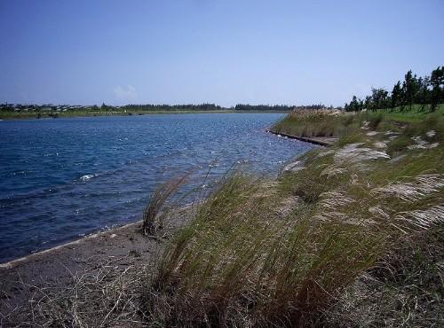 琵琶湖、活水湖-活水湖