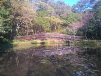 生態池<br/> 攝影:Lu