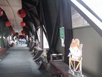 貓橋內<br/> 攝影:Lu
