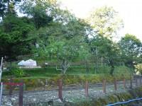 201407生態教育館前<br/> 攝影:三個井