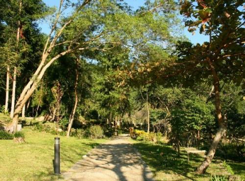 知本国家森林游乐区-植物園區步道