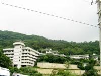 座落於土城山上的承天禪寺<br/> 攝影:Eva隨手拍