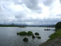 大漢溪河濱公園<br/> 攝影:Eva隨手拍