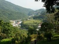 榕蔭步道觀知本溫泉地區<br/> 攝影:老山羊部落格