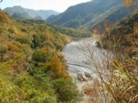 萬大溪落葉林景觀<br/> 攝影:老山羊部落格
