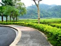 龍潭湖行人步道<br/> 攝影:余燕鳳