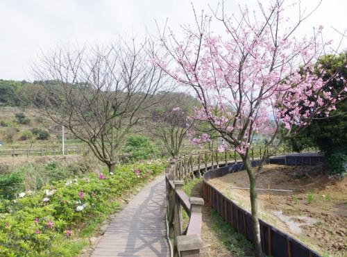 三生步道-大坑溪三生步道