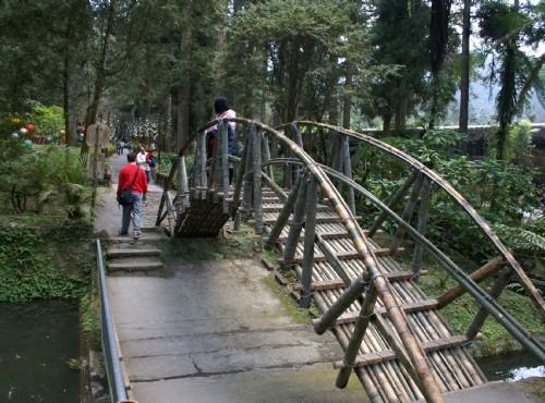 溪頭自然教育園區(溪頭森林遊樂區)-仿大學池造景