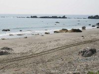 石雨傘海岸線<br/> 攝影:老山羊部落格